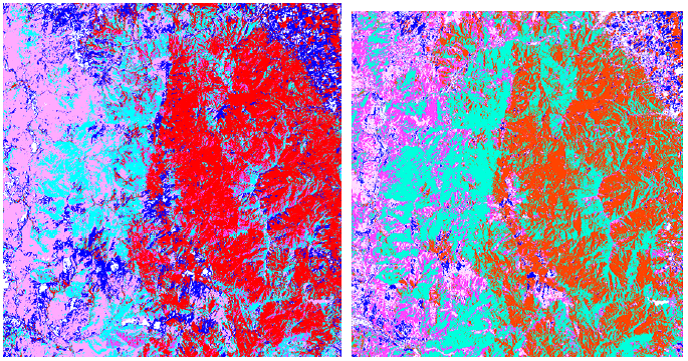Land cover in the Corsican case study area in 1994 (left) and 2012 (right) based on satellite imagery. The blue areas represent pastures, the red area show deciduous forest and the turquoise area pine forest. A strong decline of pasture area as well as a strong increase of pine forest is observed over time.