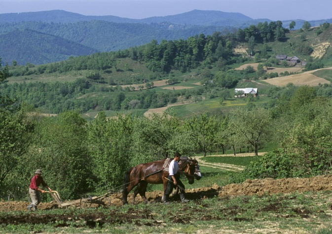 Illustration: Support to less favoured area - Farmers preparing the field in the hills above Nepos, Romania